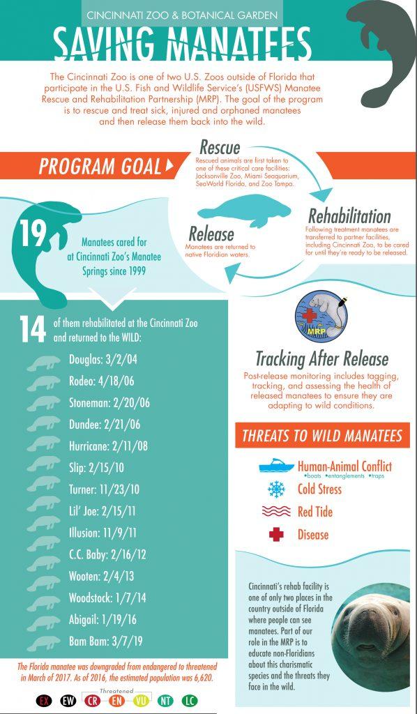 manatee rehab infographic