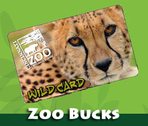 zoo bucks logo