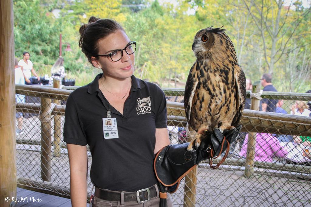 Keep holding an Owl