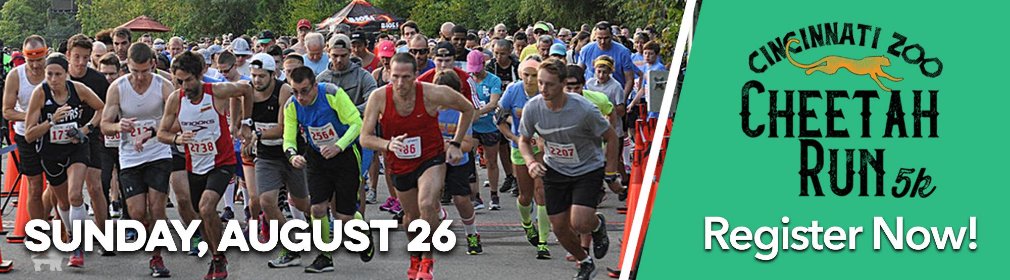 Cheetah Run 2018 header
