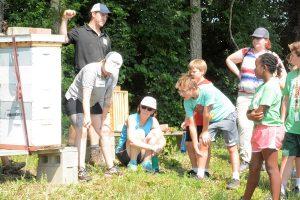 Family Community Service honeybee event