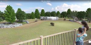Virtual Reality view of elephant habitat