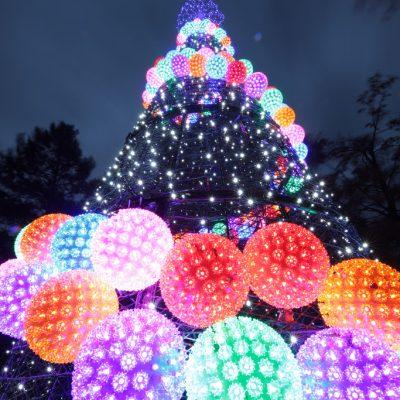 PNC Festival of Lights Tree