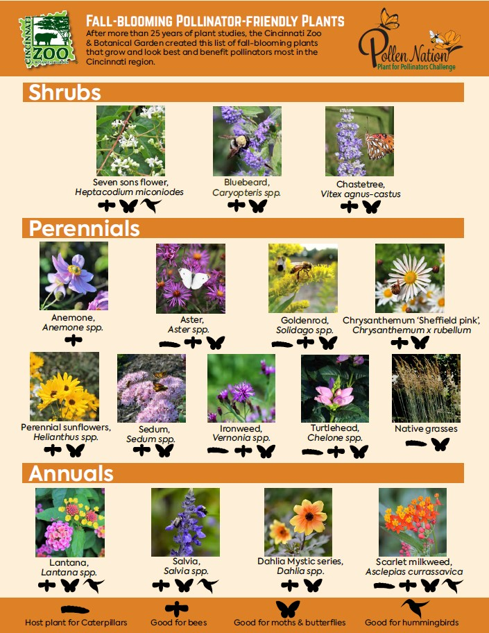 Fall-Blooming Plants pdf