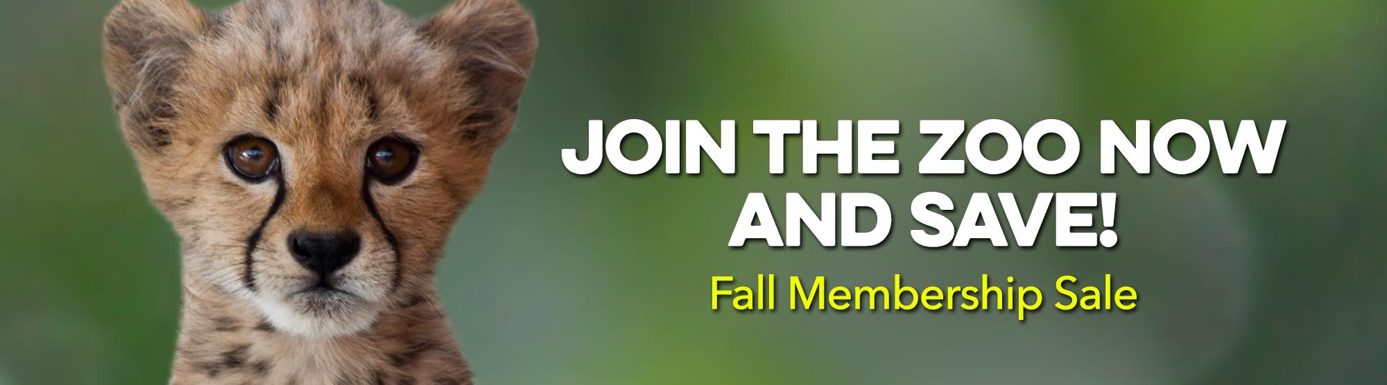 10% off all memberships during fall membership sale