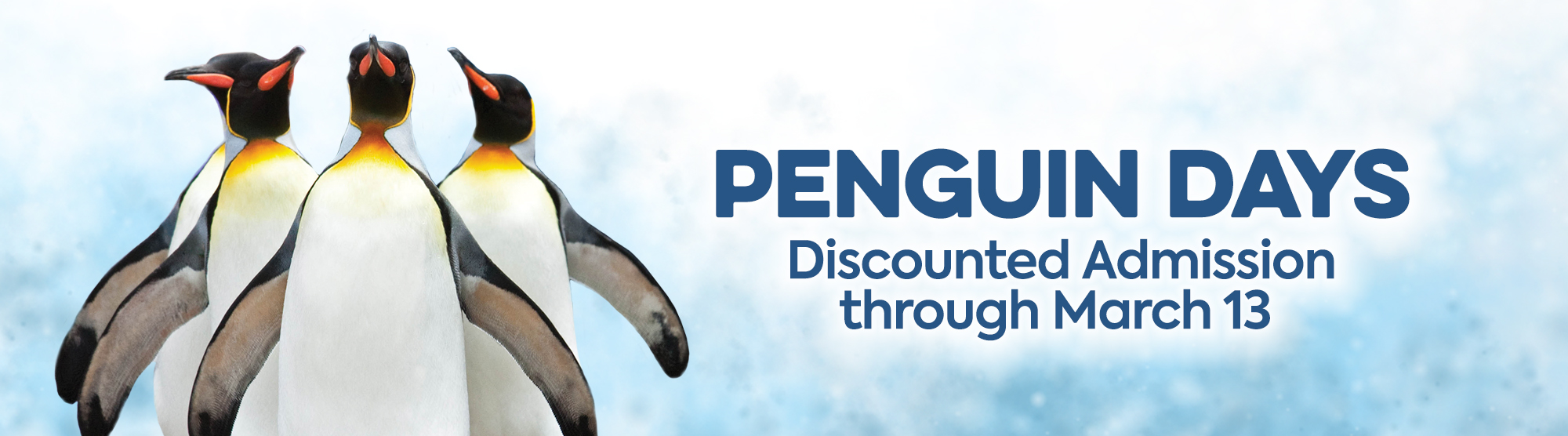 penguin days discounted admission through march 13