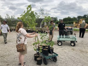 Native plant sale Bowyer Farm