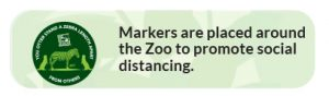 markers are placed around the zoo to promote social distancing