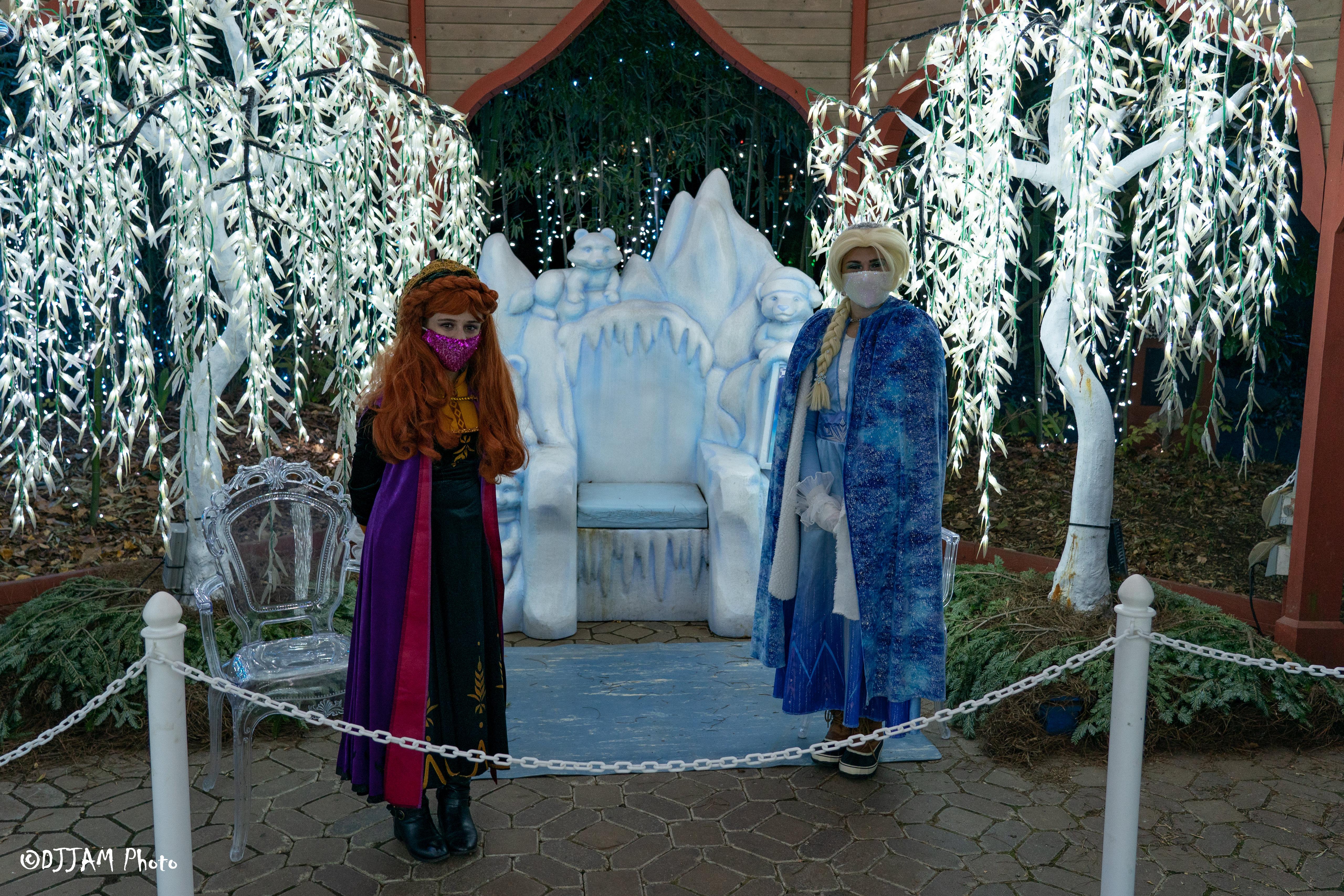 festival of lights frozen sisters