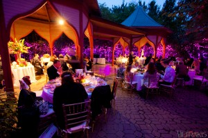 Evening Event in Elephant Reserve