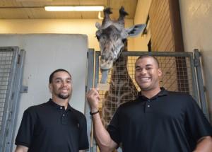 Billy Hamilton and Donald Lutz Feeding Jambo the Giraffe
