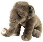 CK Elephant