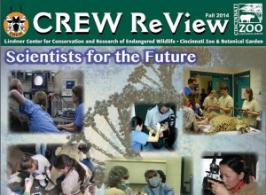 crewreview2014
