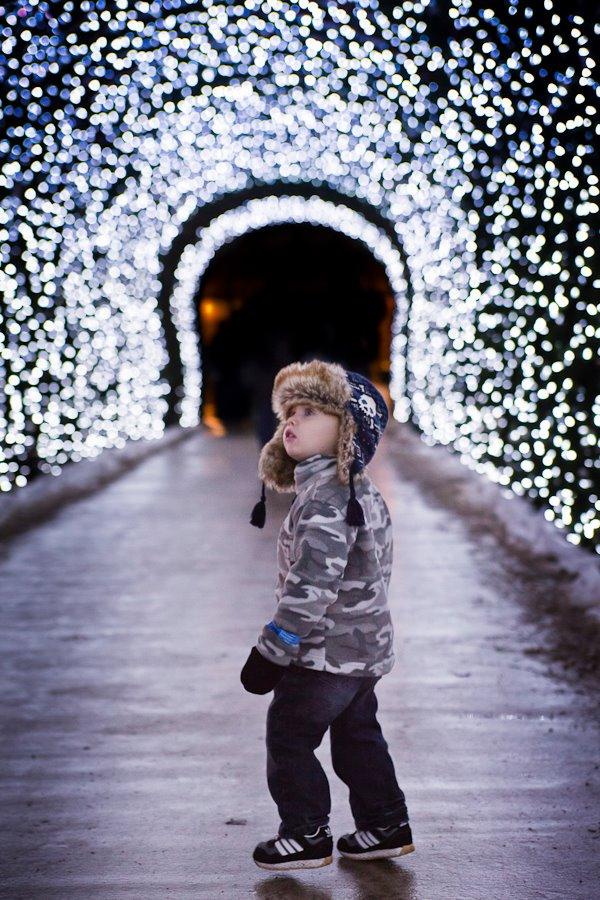 Photo Contest Winner Announced The Cincinnati Zoo