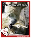 Beary Special
