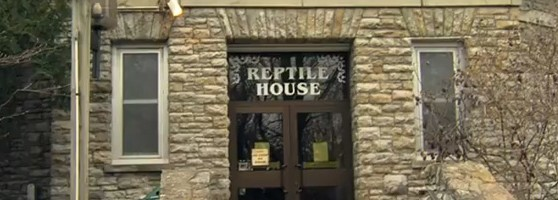 reptile_house