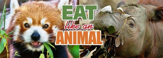 eat_animal