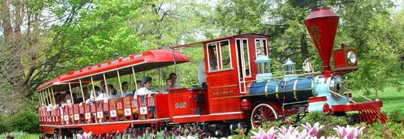 summer_train