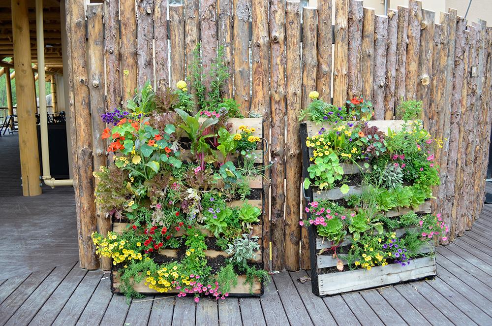 Edible Garden Cafe Menu