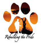 Rebuilding the Pride logo