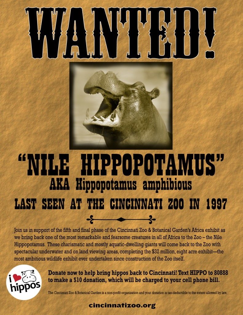hippo_poster-1