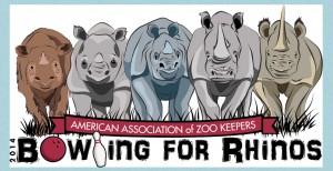 Rhino bowling