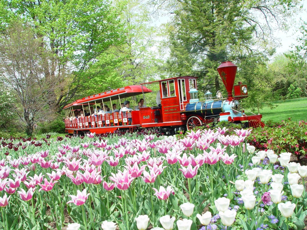 rides & 4-d experiences - the cincinnati zoo & botanical garden