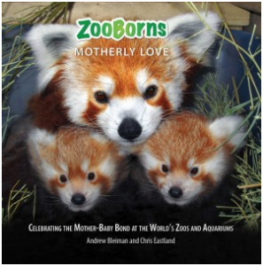 zoobornsmotherlylove