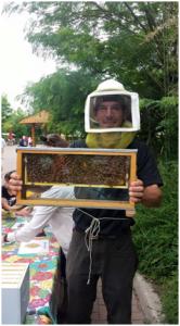 honeybeesatom