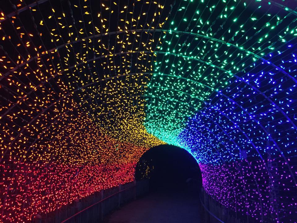 12065924_10153621467590479_5793306968296715080_n - Toledo Zoo Lights Before Christmas