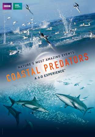 coastal predators