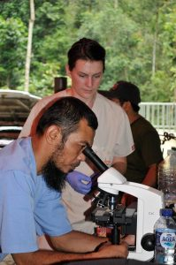 Dr. Jessye and Dr. Zulfi examine samples from Harapan. Good news! He's fertile :)