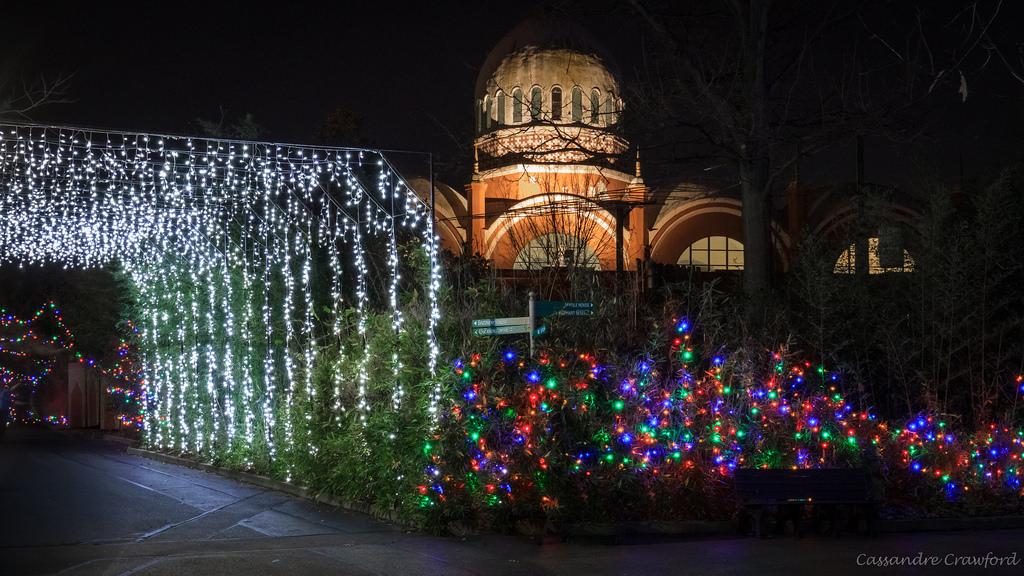 PNC Festival of Lights & PNC Festival of Lights - The Cincinnati Zoo u0026 Botanical Garden azcodes.com