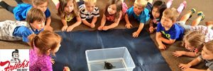 Zoo Outreach for Schools