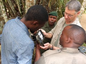 Checking camera trap batteries in the forest (Photo: Okapi Conservation Project)