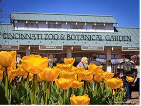 Etonnant Celebrate The 30th Anniversary Of The Botanical Garden! CINCINNATI ...