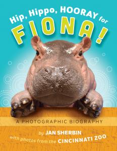Take Cincinnati Zoo S Fiona Home In New Book Hip Hippo
