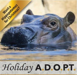 ADOPT Gifts Make A Wonderful Present For All The Animal Lovers On Your List
