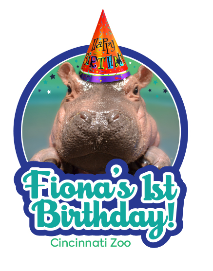Happy First Birthday To Fiona Cincinnati Zoo Amp Botanical Garden