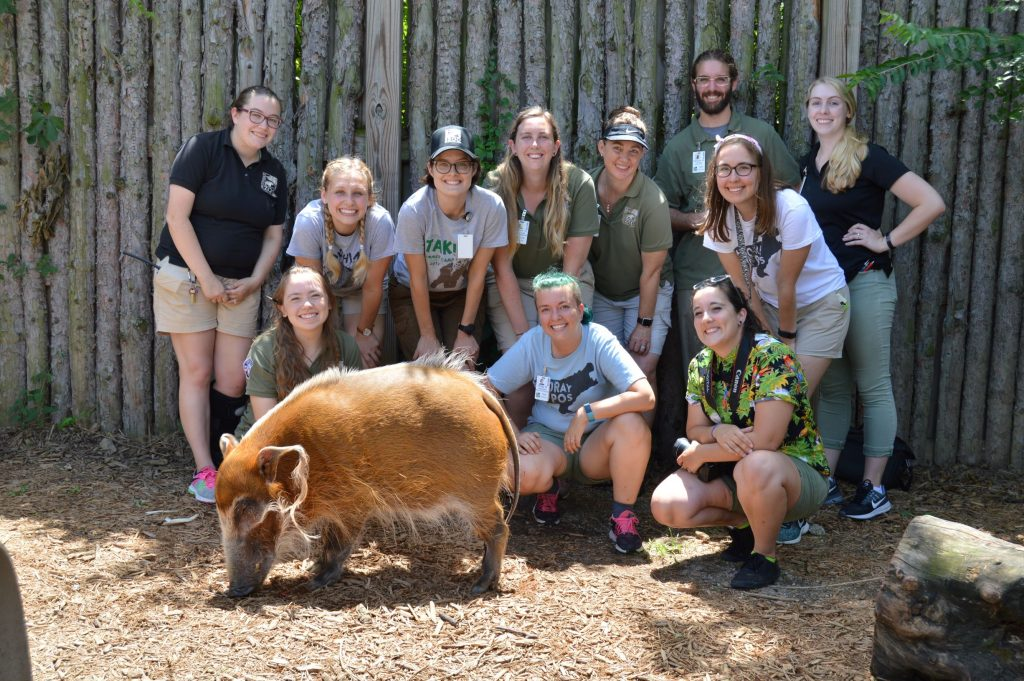 wild encounters americorp posing with red river hog